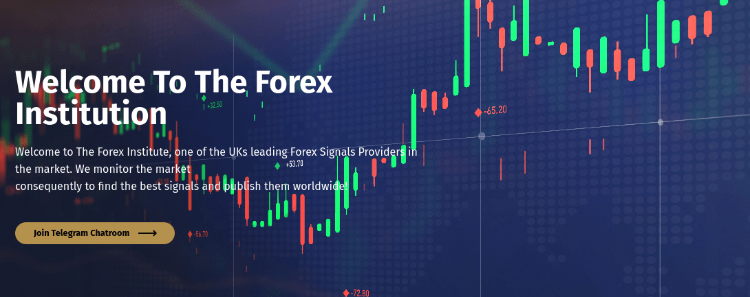 the forex institute review